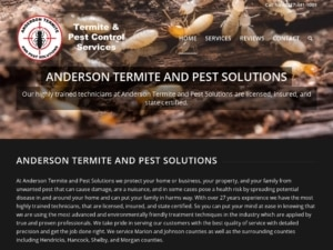 Anderson Termite and Pest Solutions